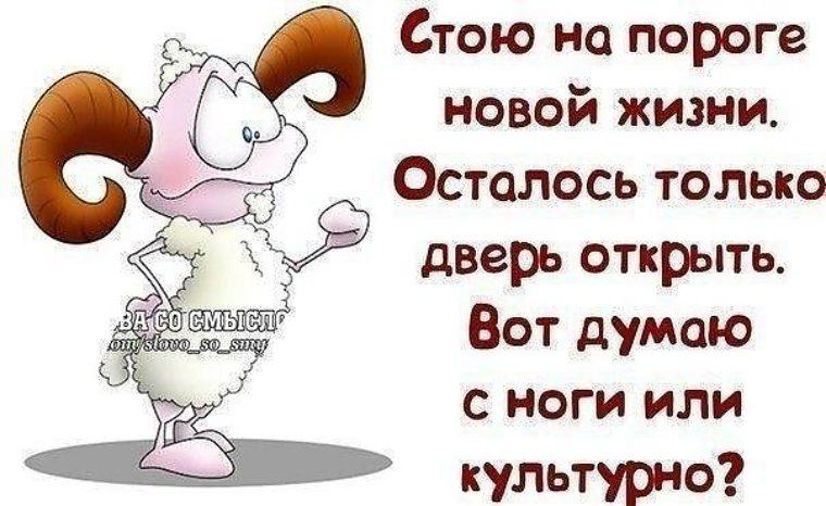 https://p4.tabor.ru/feed/2016-12-18/11737955/272485_760x500.jpg