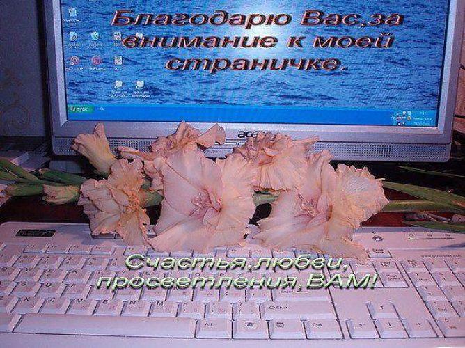 Сайт кто когда открытки написать