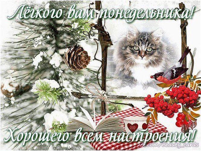 Пожелания удачного зимнего понедельника