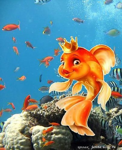 Новогодние, открытки золотые рыбки