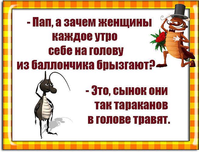 тараканы в голове картинки прикольные у мужчин замены масла