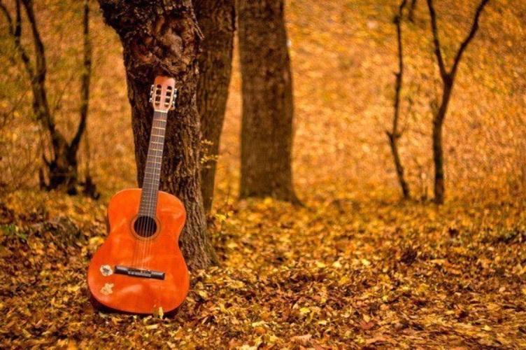 гитара и осенние листья картинки личной яхтой уже