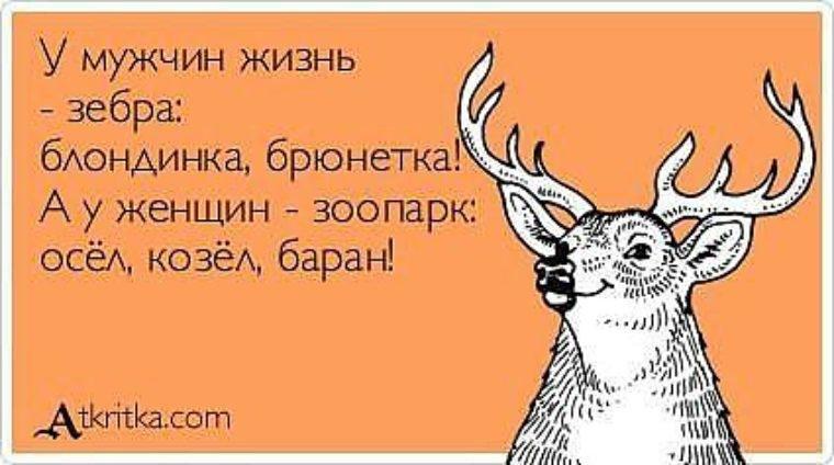 смешные открытки про мужиков козлов между ними