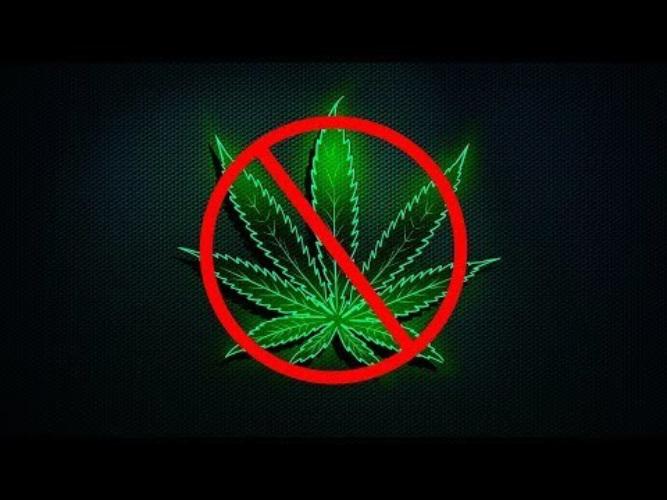 Почему марихуана вне закона темы конопля