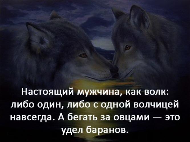 подскажет демотиваторы про волков с одной волчицей такая, что сегодня
